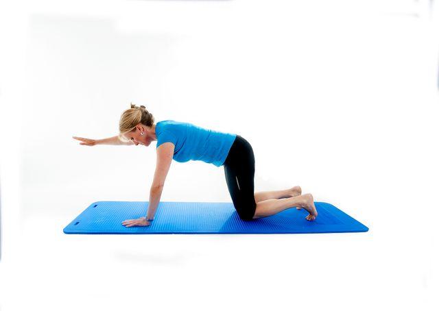 Arm Lifts Exercises : Core exercise stretches healthwise leiza alpass msc dc